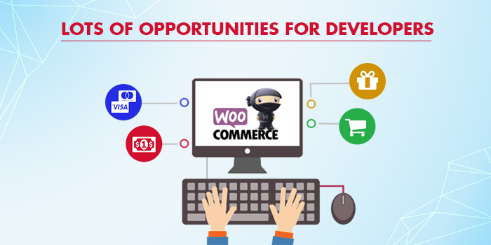 Opportunities For Developers