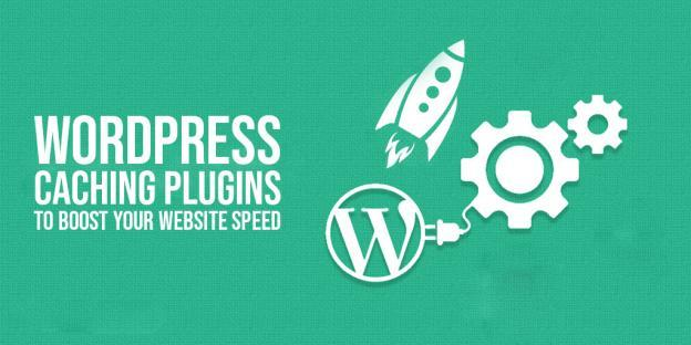WordPress Caching Plugin